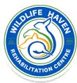 wildlife-haven