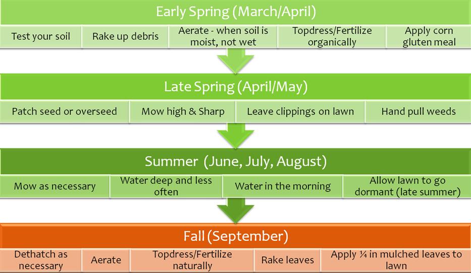 olc_timeline